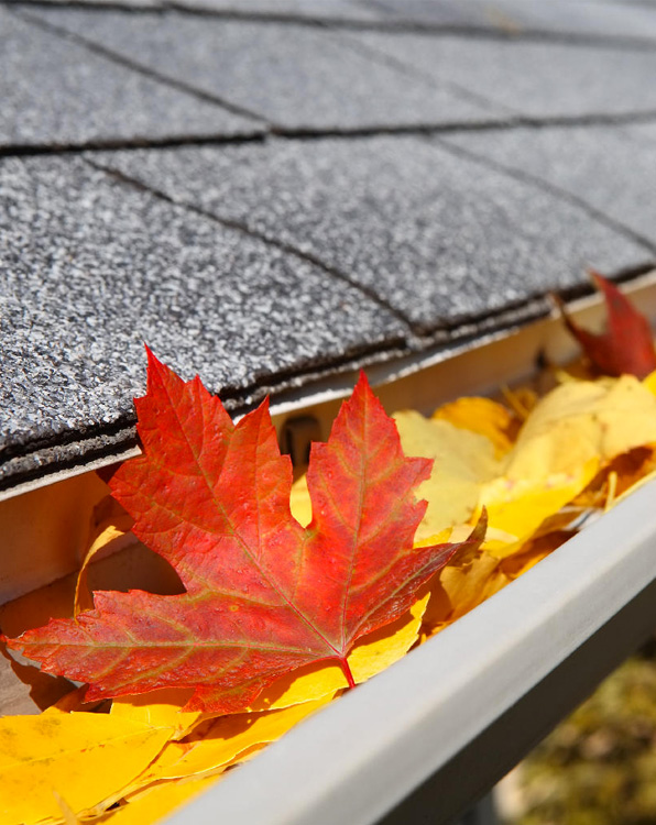 gutter cleaning charlottesville
